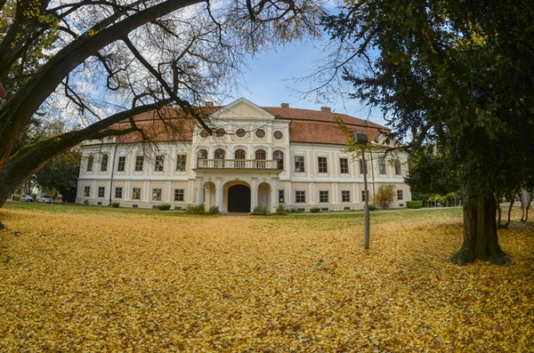Dvorac Jankovića, Daruvar
